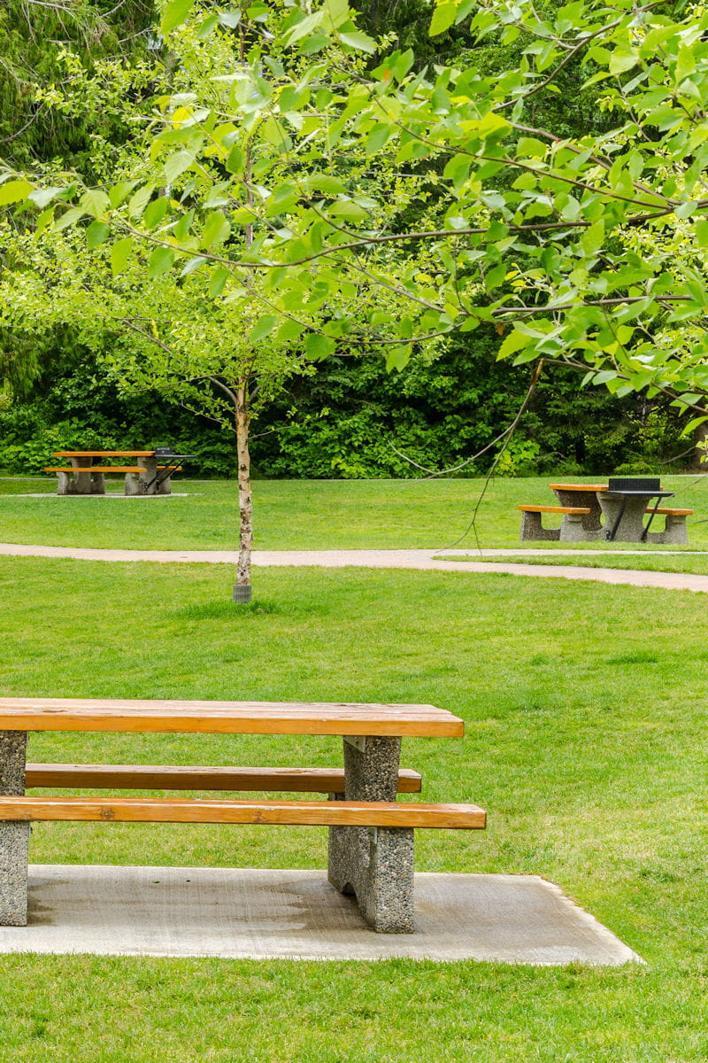 Comment Faire Un Bon Barbecue il est interdit de faire un barbecue dans les parcs publics