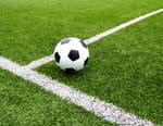 Football : Championnat du Portugal - Sporting Club Portugal / Vitória SC