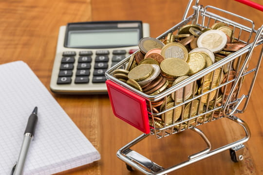 Impôt sur le revenu: vos intérêts de retard bientôt divisés par deux?