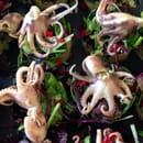 Entrée : Terre et Mer  - Poulpes en marinade -