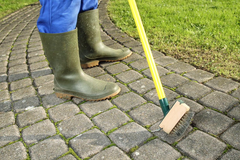 Eau De Javel Anti Mousse Terrasse anti-mousse : comment choisir ce produit et l'utiliser