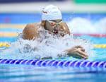 Natation - International Swimming League 2019