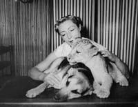 Les oubliés de l'histoire : Jeannette McDonald, une lionne parmi les lions
