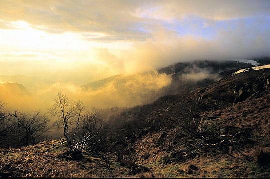 Voile de brume sur les hauts