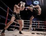 Kick-boxing - Enfusion 67