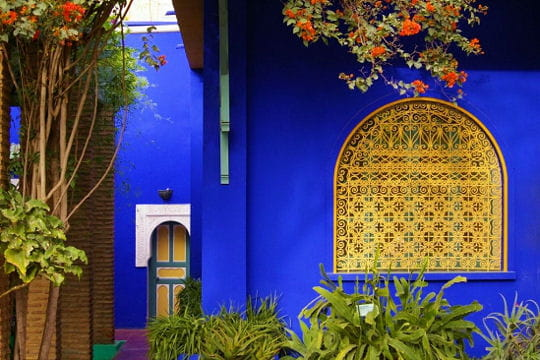 dans le fabuleux jardin botanique de majorelle. Black Bedroom Furniture Sets. Home Design Ideas