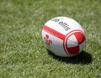 Rugby : Top 14 - Montpellier / RC Toulonnais