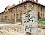 Auschwitz : voyage au bout de l'enfer