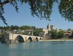 Croisière au fil du Rhône