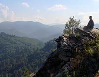 L'homme des bois : Cévennes, forêt des résistances