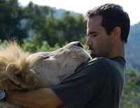 Ma vie avec les lions : La descendance attaque