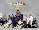 Eurovision France, c'est vous qui décidez