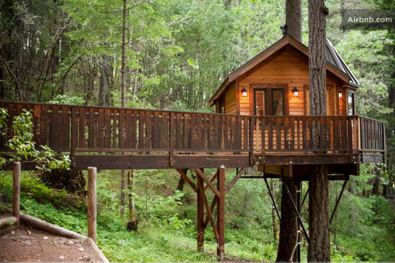 ma cabane dans les arbres en oregon, 185 euros