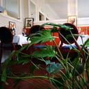 Restaurant : Le P'tit Louis  - Une jungle luxuriante vous attend à l'étage ! -   © Marand Nicolas