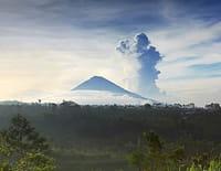 Chacun son île : Bali