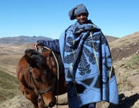 Les fiers cavaliers du Lesotho