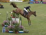 Equitation : Coupe des nations de saut d'obstacles