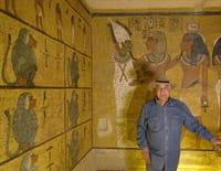 Mille et une Egyptes : Les animaux