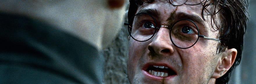 Harry Potter 8: un autre film prévu pour la suite de la saga?