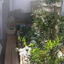 Le Trousse Chemise  - Le jardinet de la terrasse -