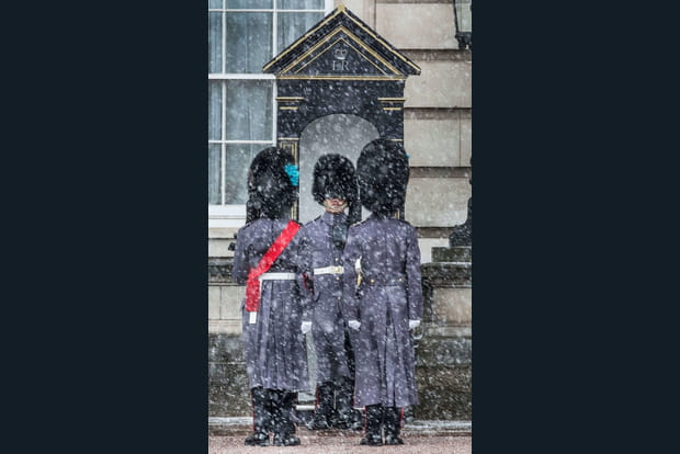 Gardes irlandais