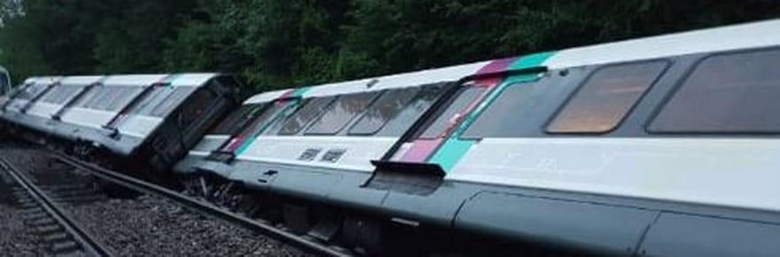RER B: trafic interrompu plusieurs jours suite à un incident [Photos]