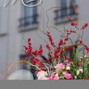 Entrée : Mariette  - Exterieur-Restaurant Mariette -   © Mariette