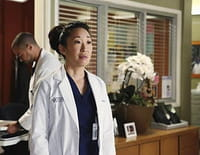 Grey's Anatomy : La vie rêvée de Cristina