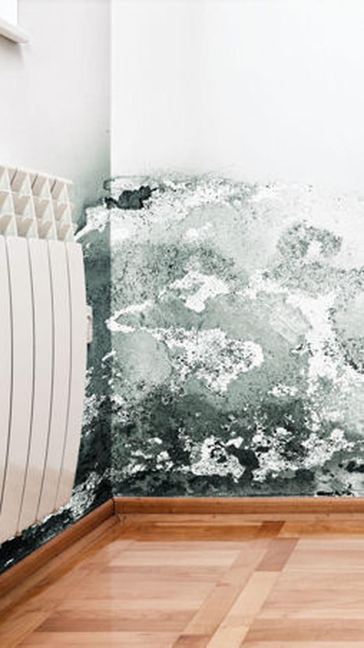 Appareil Magnétique Anti Humidité appliquer un enduit anti-humidité