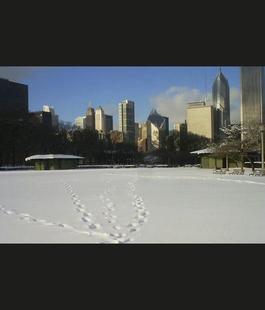Chicago, ville de la neige et de vent