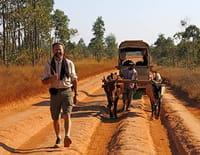 Mada Trek : Sur la route de l'Ouest