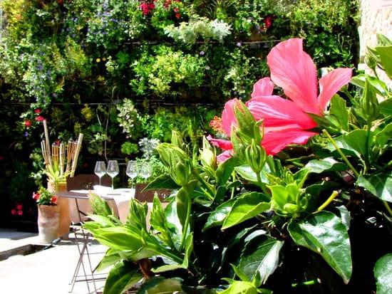 Les Jardins d'Alienor  - Patio -   © Les Jardins d'Aliénor