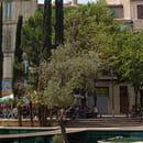 Restaurant : Le Resto Provencal  - cours julien -   © liotardo