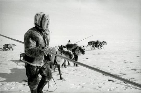 Eleveur de rennes
