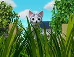 Chi mon chaton