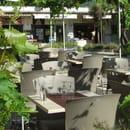Le Menestrel  - Terrasse sous treille de vermantino et muscat -