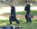 NCIS : enquêtes spéciales