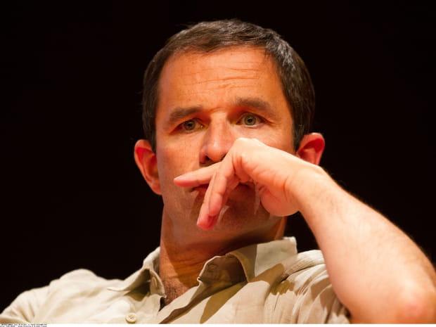 Benoît Hamon: ce que vous ne savez pas sur le candidat du PS
