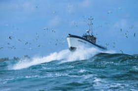 Ligneur : un métier difficile dans une mer de légende