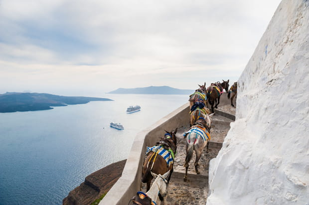 A Santorin, monter sur un âne lorsqu'on est en surpoids