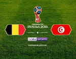 Football - Belgique / Tunisie