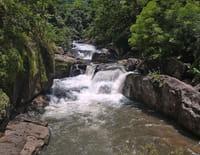 Au coeur des parcs nationaux : Parc national de Khao Yai (Thaïlande)
