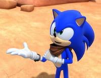 Sonic Boom : Les délicieuses vacances à domicile de Sticks et Amy