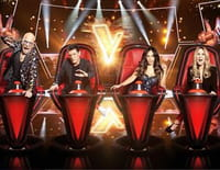 The Voice, la plus belle voix : Episode 1