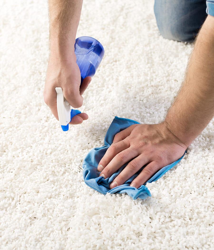 Les tapis qui retiennent toute la poussi re de la maison - Poussiere dans la maison ...