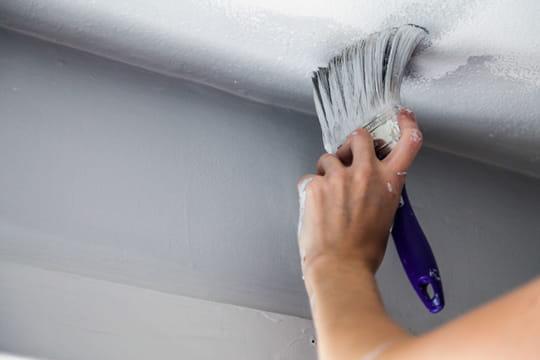 Peindre les murs et les plafonds