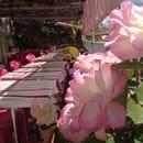 Auberge d'Aigaliers  - fleur -
