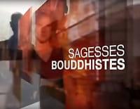 Sagesses bouddhistes : Cinquante ans de zen Sôtô en Europe