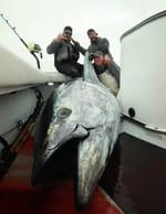 Pêche à haut risque : Nord contre Sud