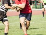 Rugby : Championnat national des provinces néo-zélandaises